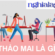 nghialagiorg's picture